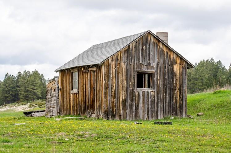 cabane bois